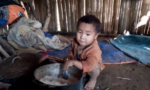 treem_vietnam01