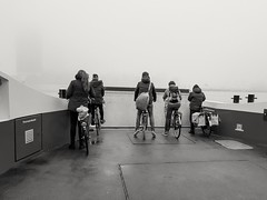 Fog and ferry