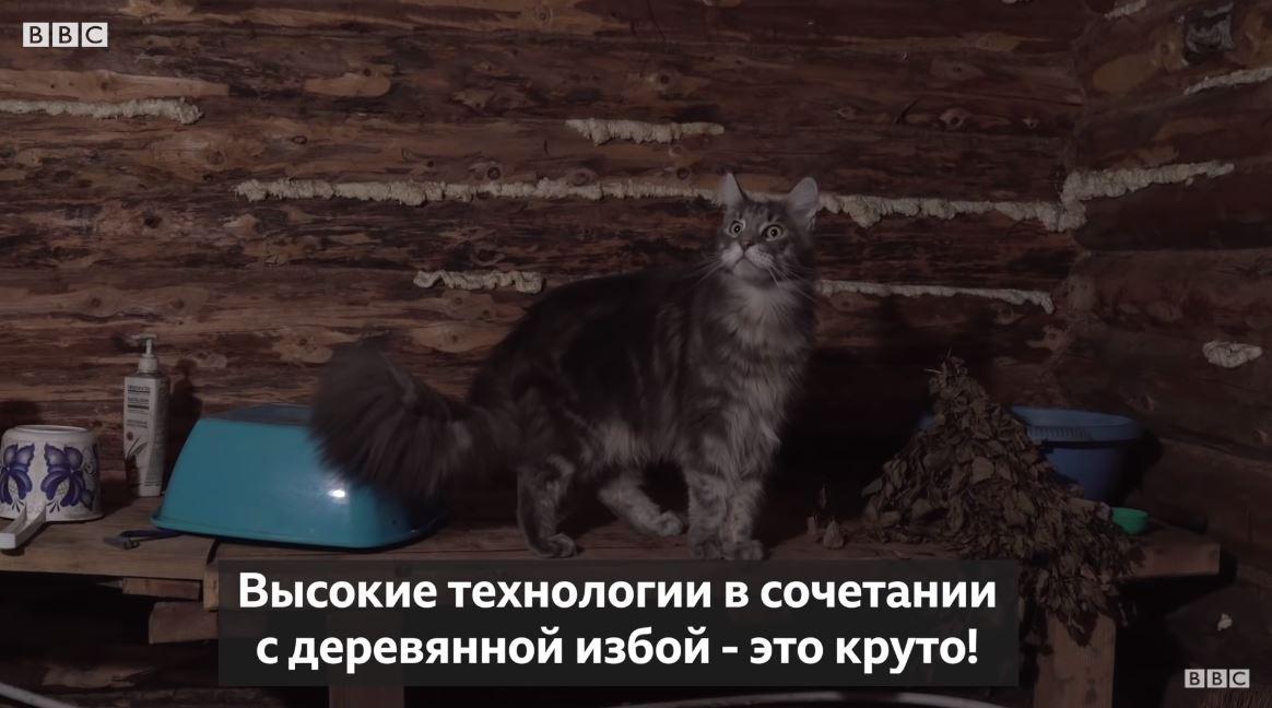 Умный робот-терминатор от русского умельца