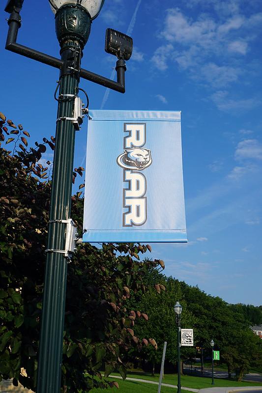 Harrisburg-HS---Pole-Banner-Blue