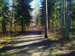Hovskogen: Mot leikeplassen , Askim, Østfold, Norway