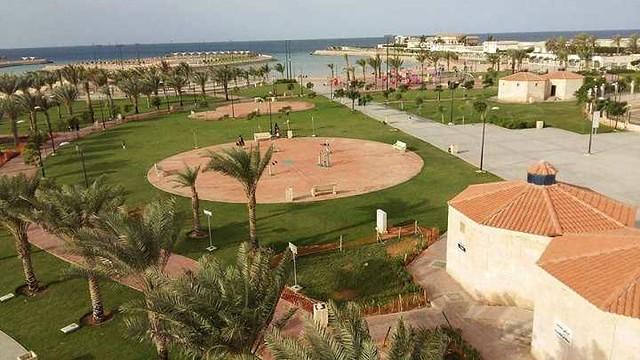 4811 7 Reasons families living in Jeddah should visit Dhaban Marine Park 05