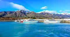 Lago Argentino Boat Trip