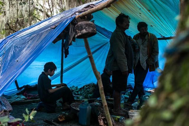Comunidade Guarani Mbya sofre pressão de fazendeiros e de empreendimentos imobiliários - Créditos: Giovana Fleck/Sul21