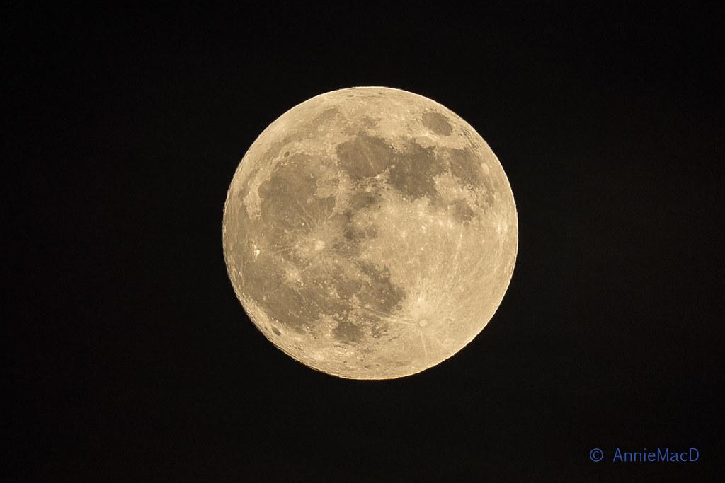 The Moon 2019.01.20