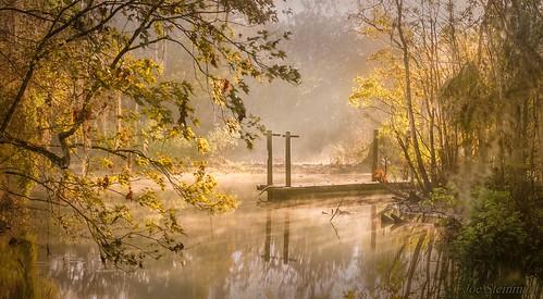 nature sunrise light illumination beauty inspirational naturesbeauty mist winter cold misty