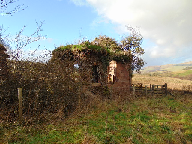 Ruins of Tunnel Cottage, Durisdeer