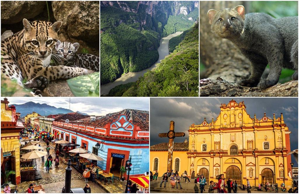 Kanion Sumidero San Cristobal Meksyk
