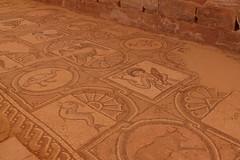 Byzantine Church & Mosaics at Petra (13)