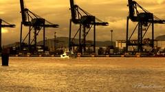Harbor - Porto