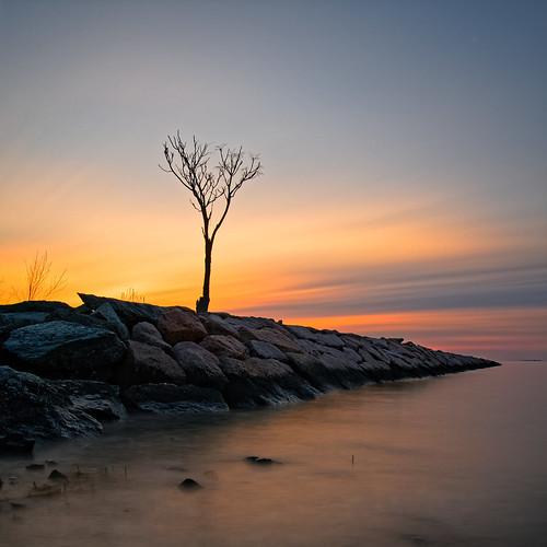 olympus ep5 panasonic 14mmf25 milford ct connecticut sunrise ocean landscape january 2019 longexposure rock water beach tree