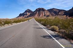 USA: NV, Red Rock Canyon