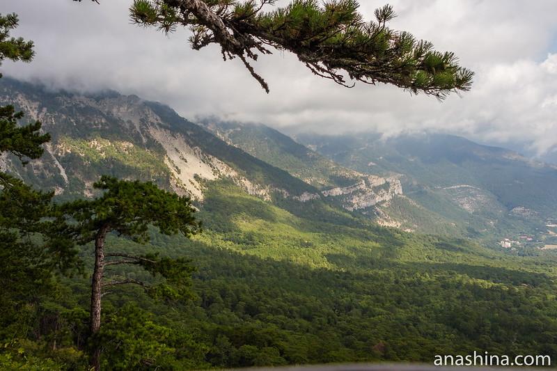 Вид на горы из Серебряной беседки, Ялта, Крым