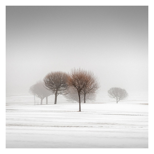 Winter Poetry III
