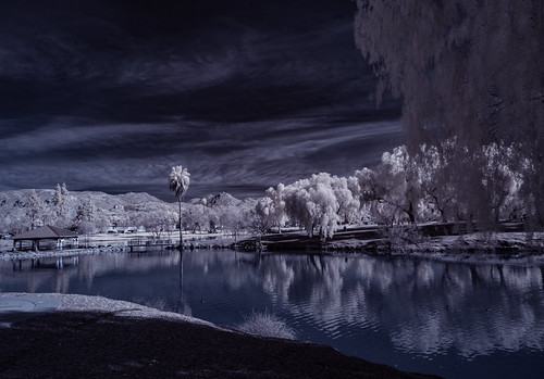 infrared infraredphotography ir convertedinfraredcamera lindolake lakeside channelswapping trees clouds vegetation reflections highcontrast surreal