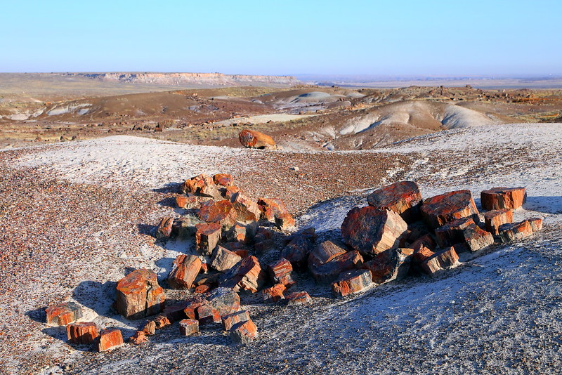 IMG_0729 Crystal Forest, Petrified Forest National Park