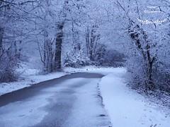 初雪 - La prima neve
