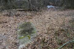 Sidewalk remnant, Long Pond Park
