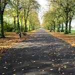 Autumn scene at Haslam Park, Preston