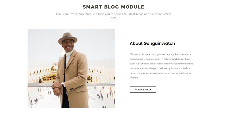 Smart-Blog-Module-Leo-Penguinwatch-for-Hand-watch-store