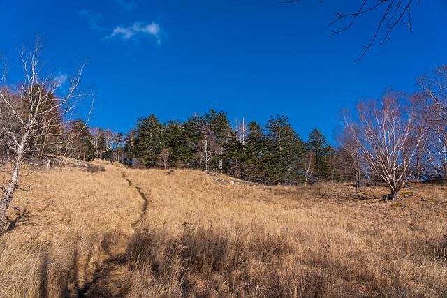 小さなカヤトの草原の先に山頂