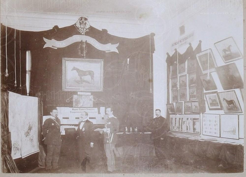1905. Санкт-Петербург. Экспозиция Государственного коннозаводства