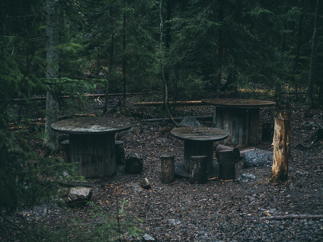 metsäeskari5