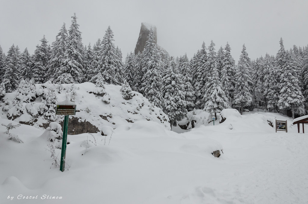 Winter on Rarau Mountains
