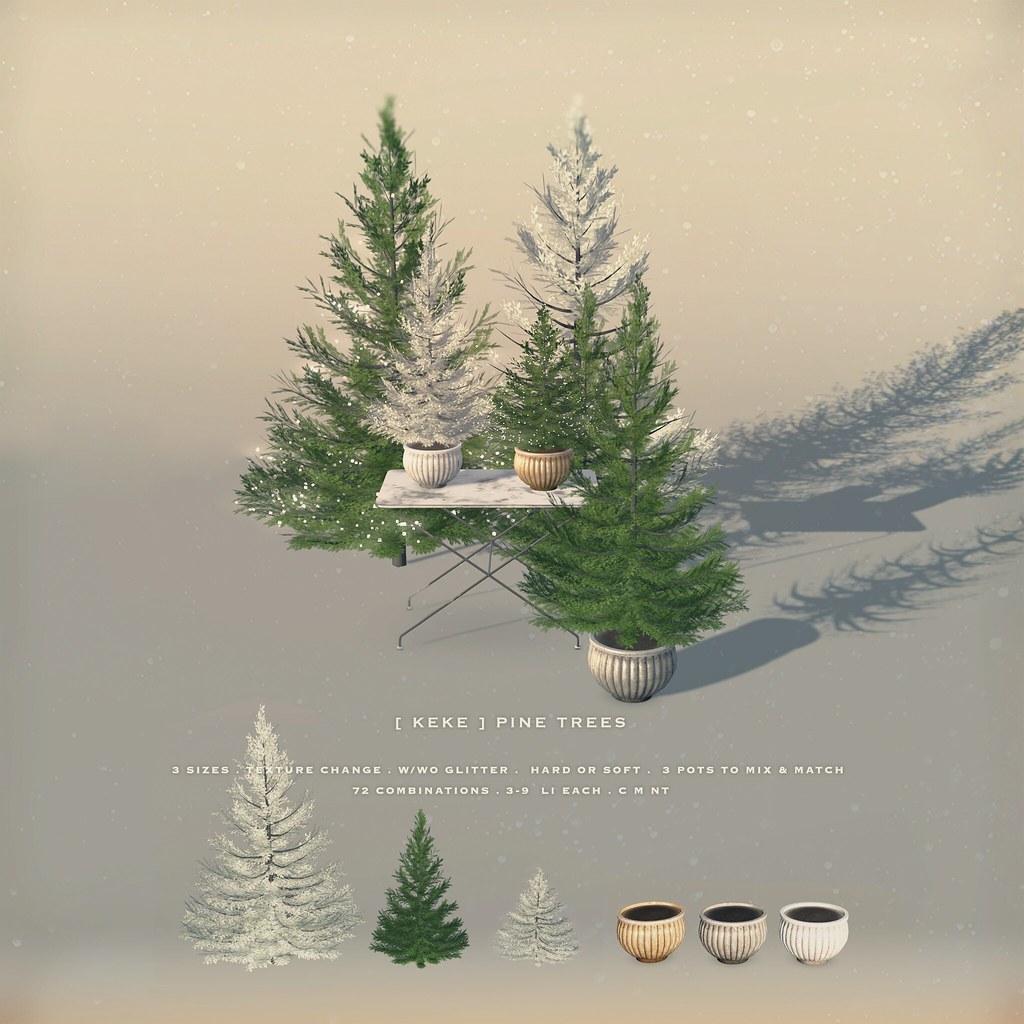 [ keke ] pine trees - TeleportHub.com Live!