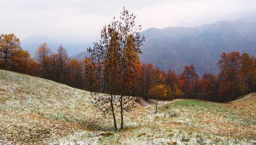 verso l'inverno... #2