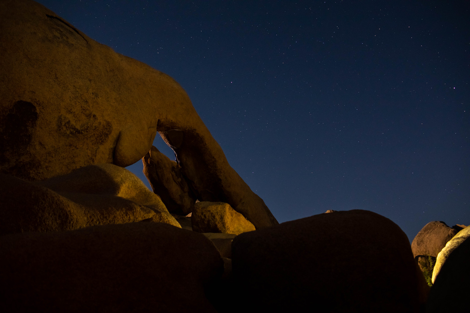 11.23. Joshua Tree National Park