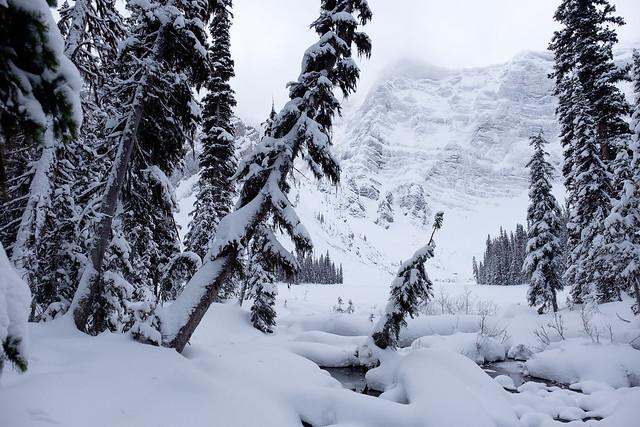 Snowshoeing - Rawson Lake - Jan 2019-7