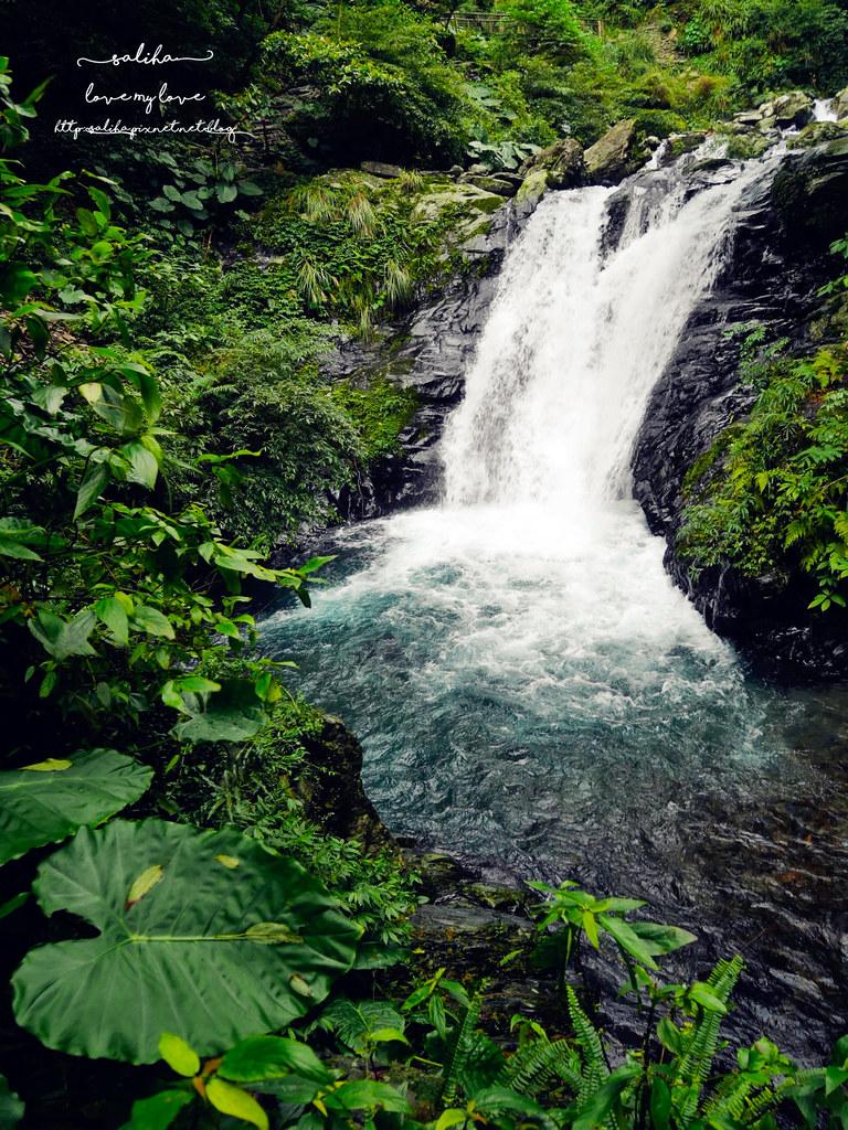 宜蘭絕美瀑布旅遊兩天一夜旅行行程景點推薦新寮瀑布步道 (4)