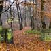 Autumn, Troy, Leeds