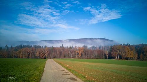 181125_Herbst_Nebel(15)
