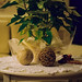 Winter decoration by florian.mueller
