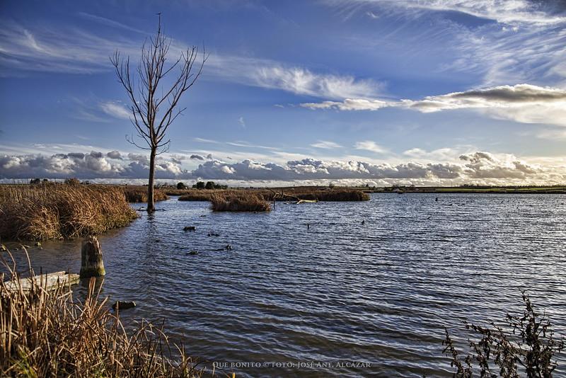 Paisaje de un humedal (Navaseca, en Daimiel) con un cielo azul en el que hay algunas nubes