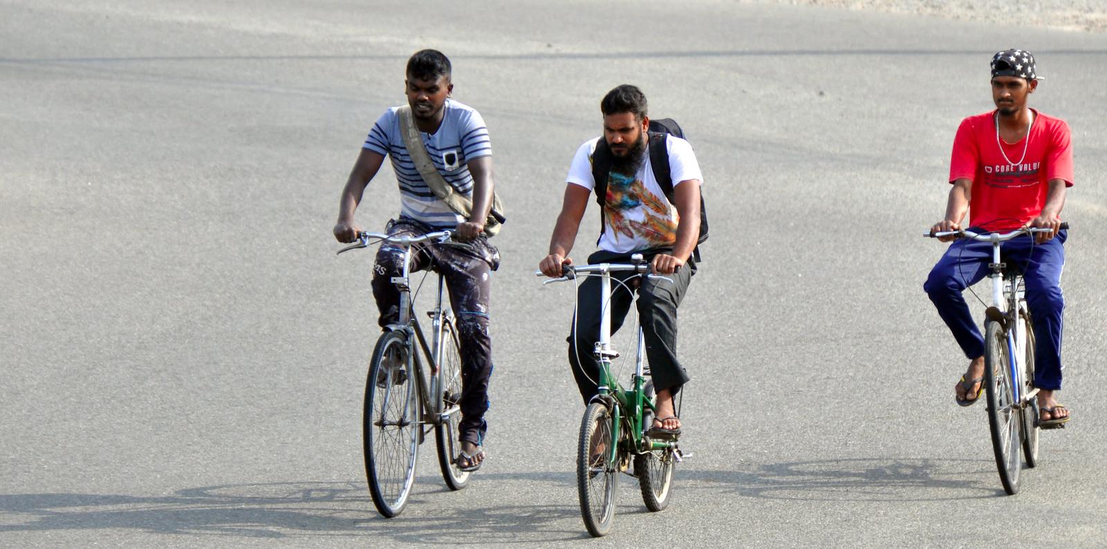 Visitar Galle en un día, Sri Lanka galle en un día - 33133866238 dc5b01ef1a h - Galle en un día, Sri Lanka