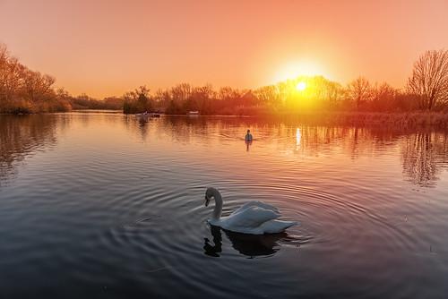 Sunrise over Bedford Boating Lake this morning