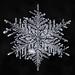 Snowflake-a-Day No. 6 by Don Komarechka