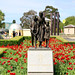 SHRINE OF REMEMBRANCE, POPPIES, MELBOURNE :copyright: