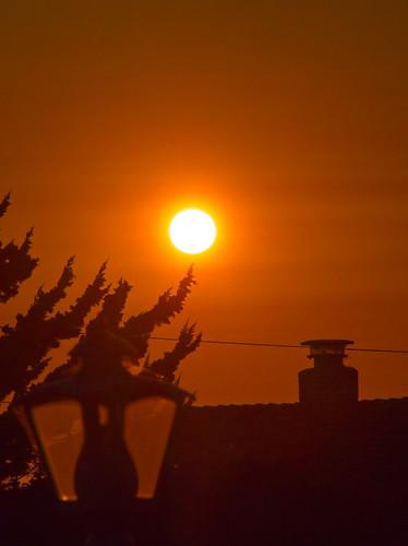 2018 garden sun sunset