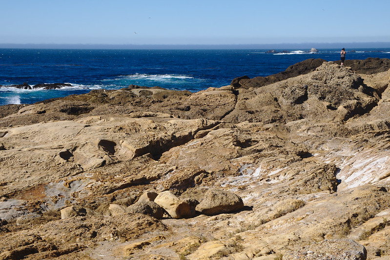 Person on the rocks, South Shore trail, Point Lobos