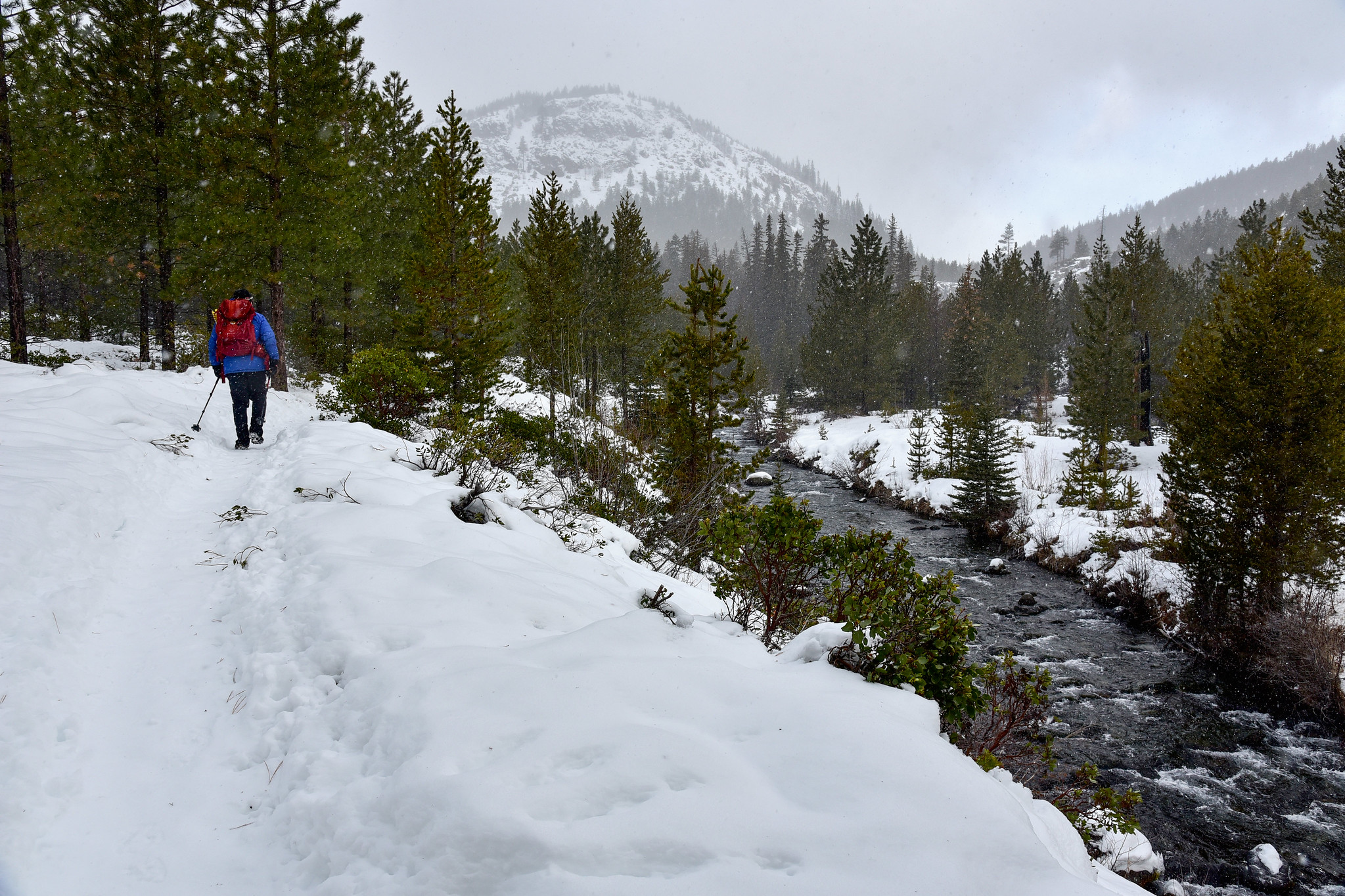 Tumalo Creek Trail