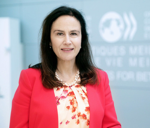 Anna Brandt, Ambassador of Sweden to the OECD