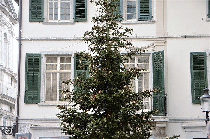 Christmas Tree Altstadt 01.12.2018