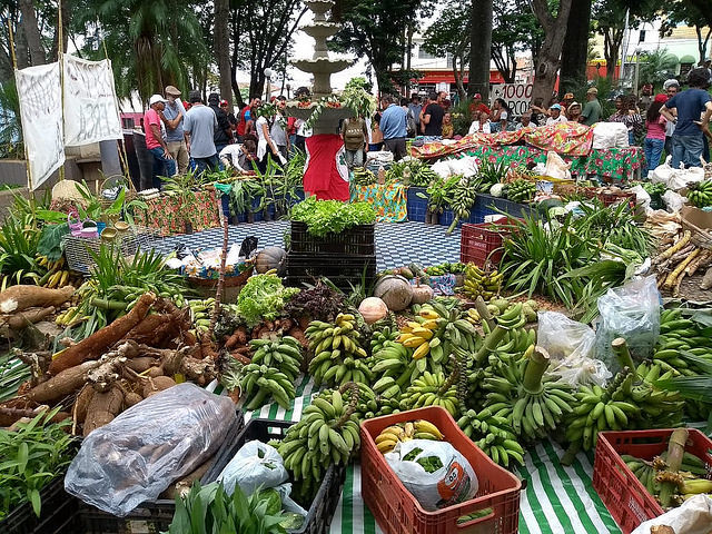 Alimentos producidos por habitantes del Quilombo Campo Grande, en Minas Gerais - Créditos: MST