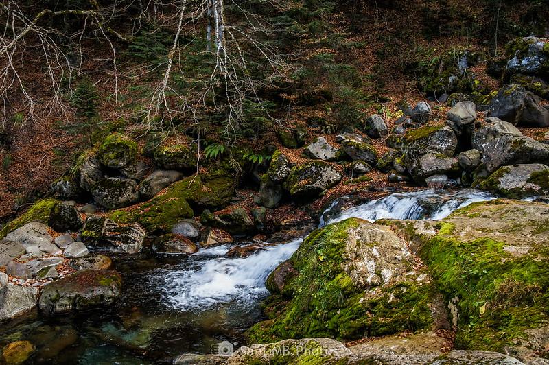 Río Joèu en el Guardader dera Aigua