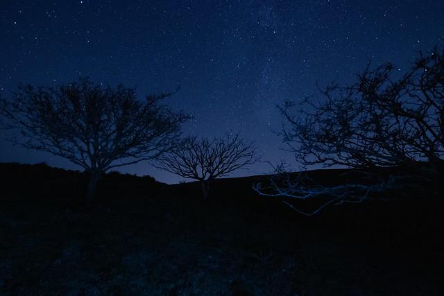 Cygnus & Delphinus above Stonehill Down