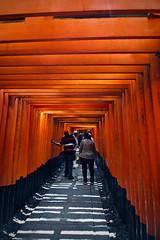 Passing Through The Vermilion Torii Gates